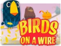 Birds On A Wire Spielautomat