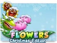 Flowers Christmas Edition Spielautomat