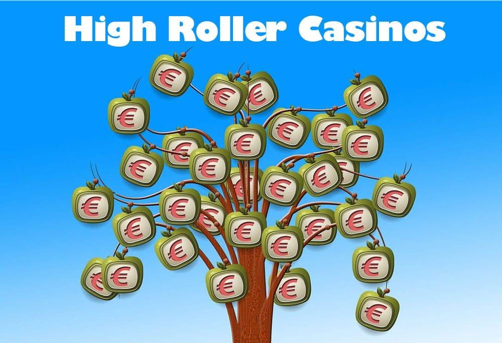 High Roller online Casinos Erfahrungen