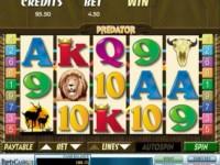 Predator Spielautomat