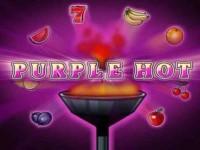 Purple Hot Spielautomat