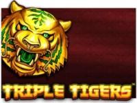 Triple Tigers Spielautomat